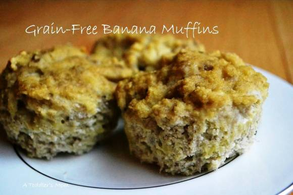 grain_free_sugar_free_diary_free_soy_free_nut_free_banana_muffins