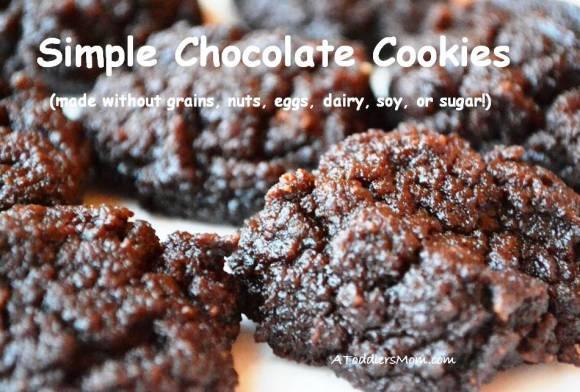 chocolate_cookies_grain_free_dairy_free_egg_free